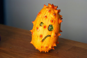 Disgruntled Kiwano